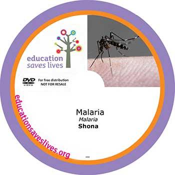 Shona DVD Lesson: Avoiding Malaria
