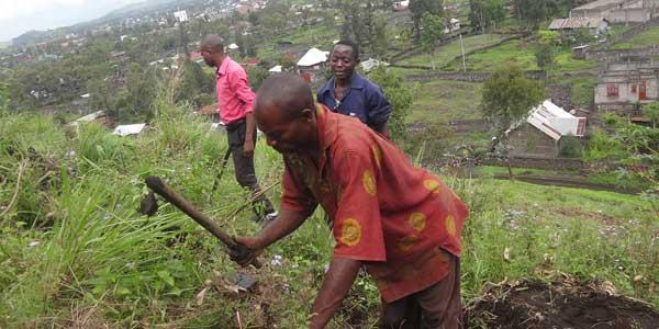 South Kivu land preparation