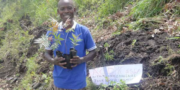 DR Congo: Grassroots Group Plants Trees to Combat Climate Change